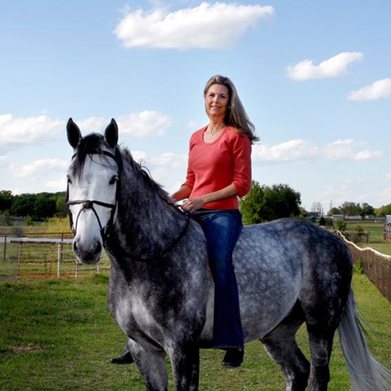 Animals 17_Johnson Horse.jpg