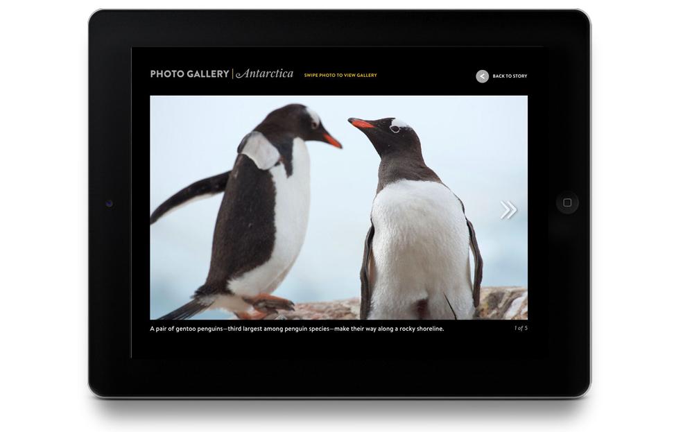 Antarctica 1 .jpg