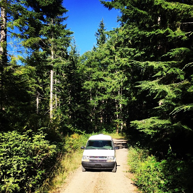 Enjoying the back roads in #Oregon. #OregonStateForest #vanontherun #dirtroads