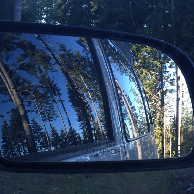 Welcome to #Oregon.  #Treesfordays #ObjectsinMirror #vanontherun