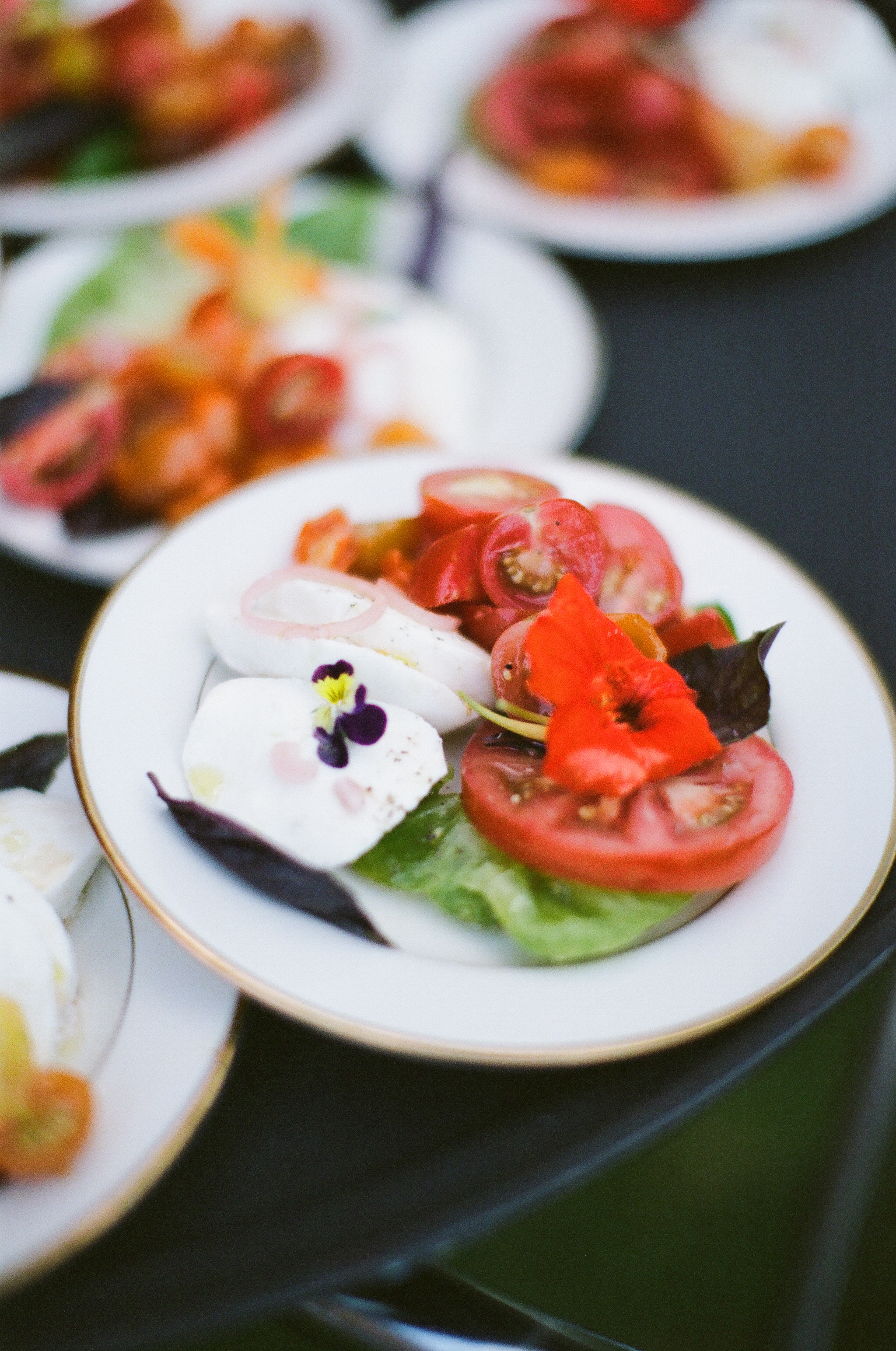 Heirloom Tomatoes with Burrata, Herbs, and Shallot Vinaigrette ©Meredith Perdue