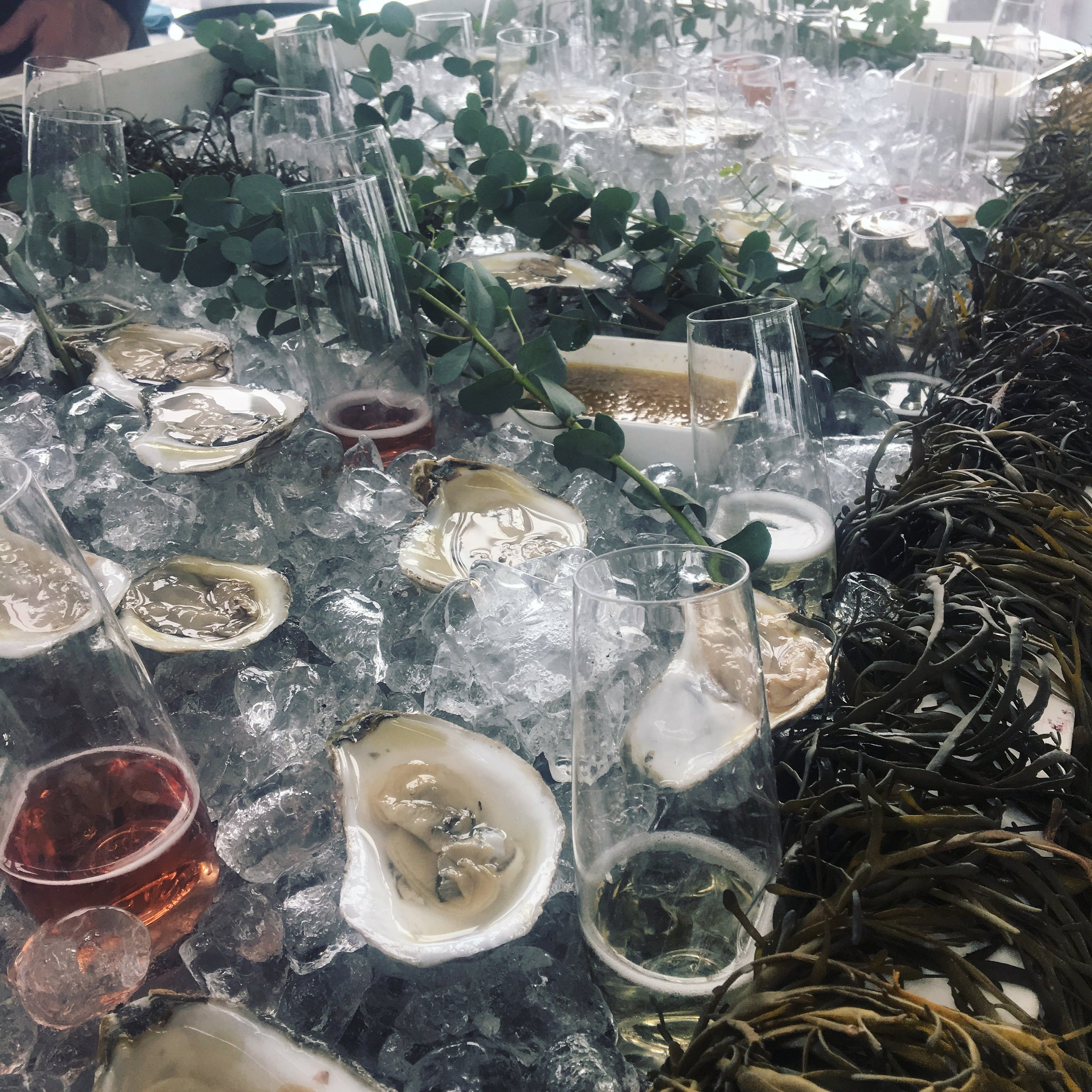 Pair your oysters with some white or pink bubbles!