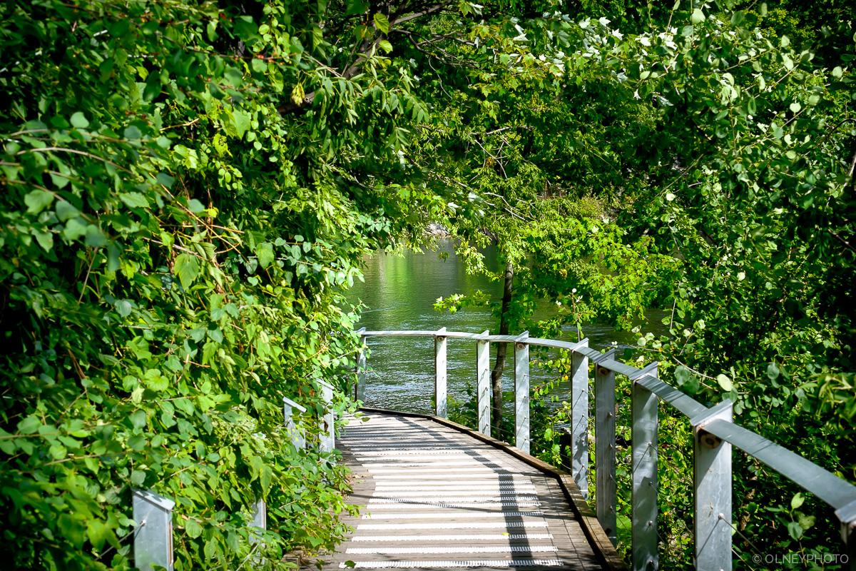 Path to promenade in Sherbrooke OLNEY Photographe
