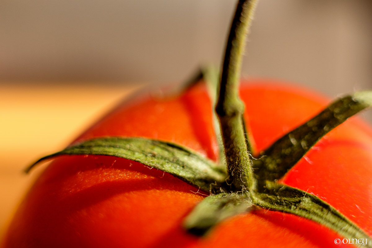 Ripped tomato close-up macro photography olney photographe sherbrooke