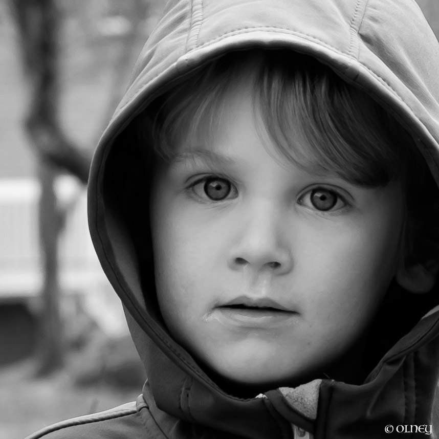 4 years old boy in black and white portrait olney photographe sherbrooke