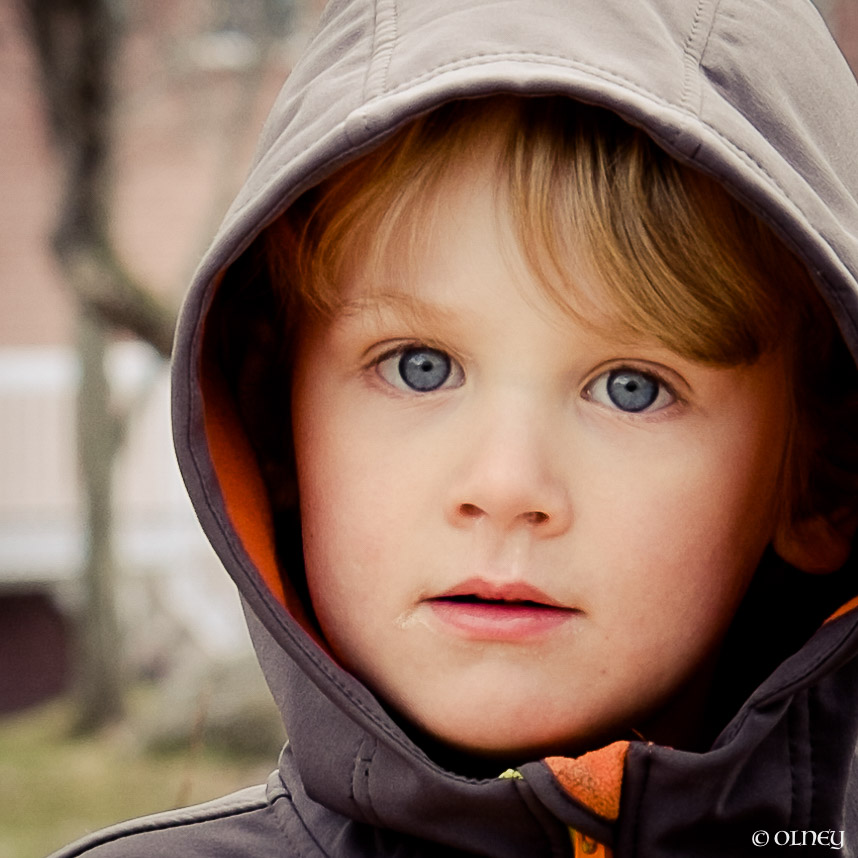 OLNEY-4 years old boy portrait olney photographe sherbrooke