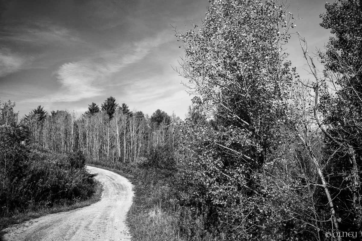Path pictured in Sherbrooke QC by OLNEY Photographe