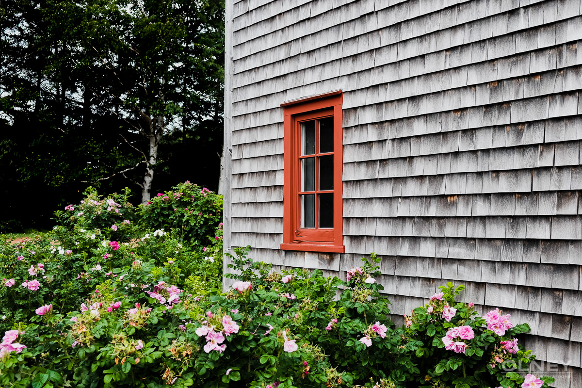 Flowers and shed in Ann of Green Gables park olney photographe sherbrooke
