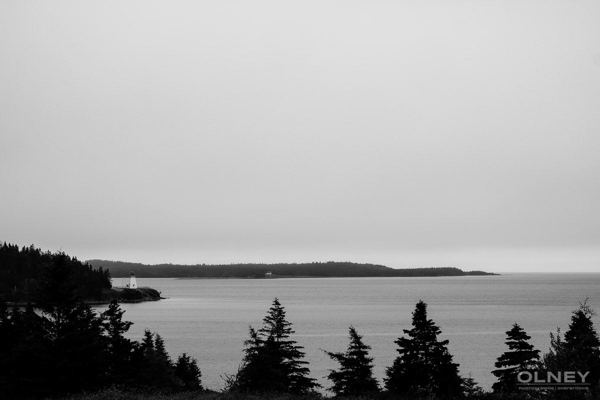 Cap Breton's shore and trees at St-Peters black and white olney photographe sherbrooke