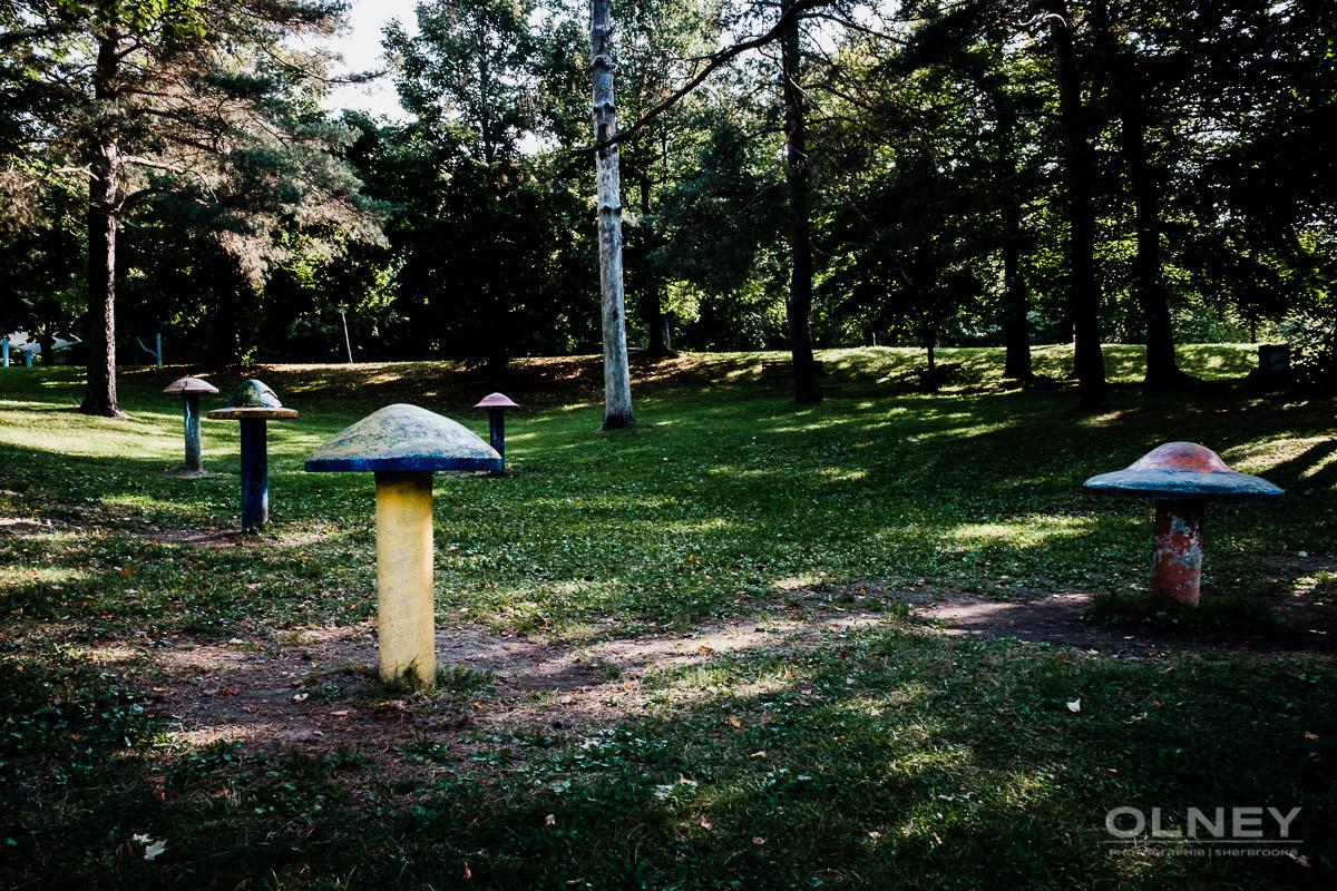 champignons de béton parc victoria sherbrooke olney photographe