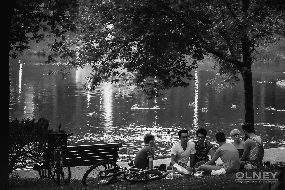 Group discussing in Lafontaine park Montreal OLNEY photographe Sherbrooke