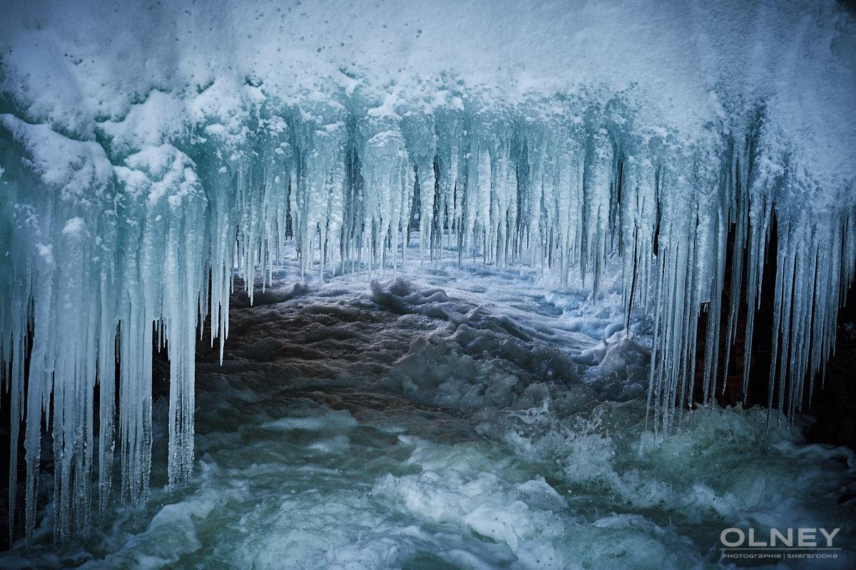 Dents de glace