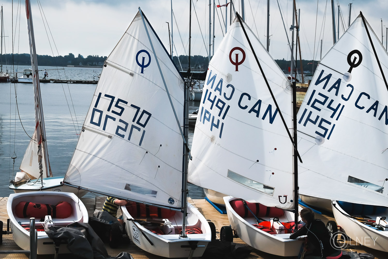 Preparing for a race in Charlottetown Prince Edward Island