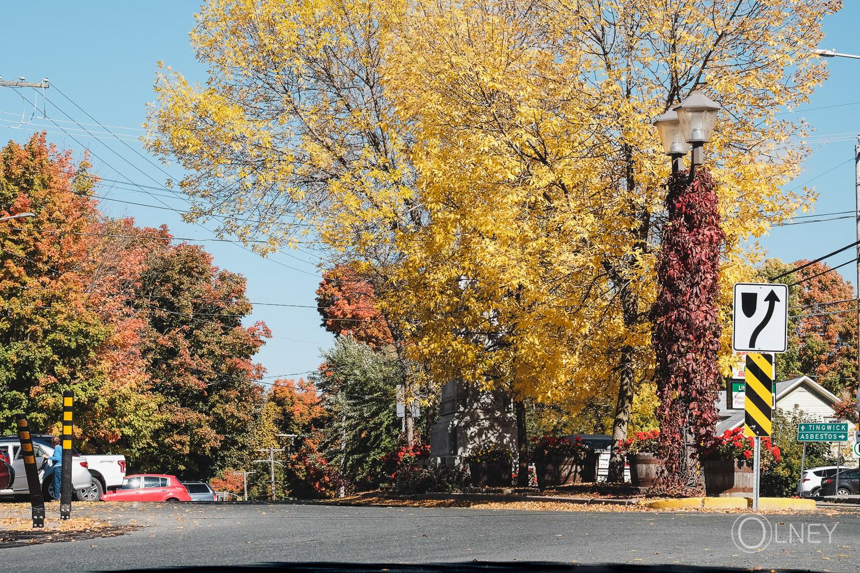 Place du carré à l'automne à Danville