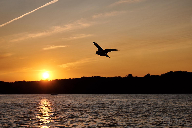 sunset on lac des deux-montagnes QC