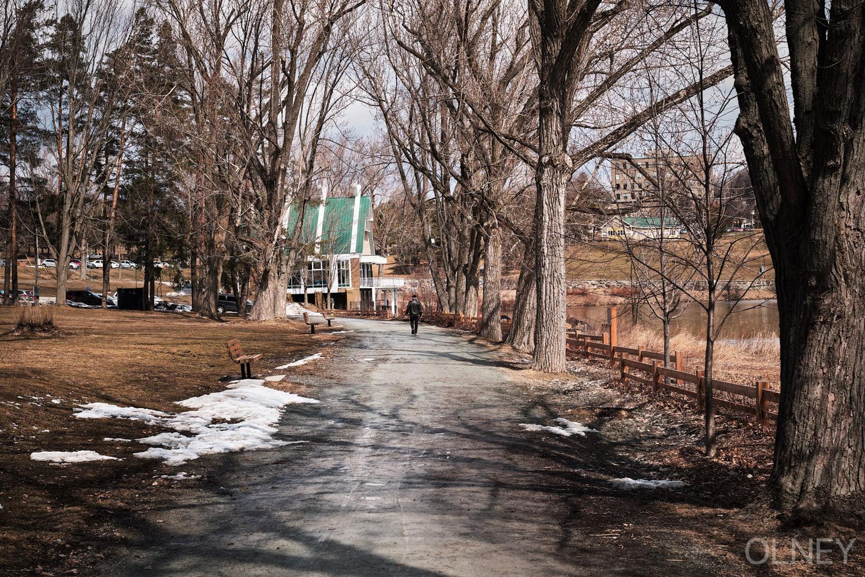 man strolling in a park