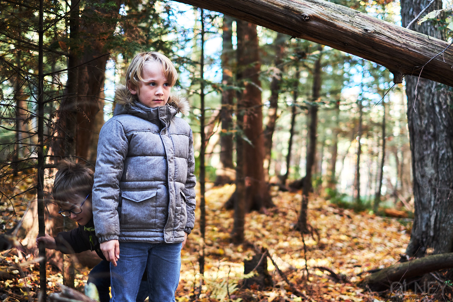 boy portrait in the woods