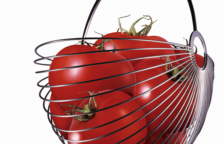 13_Tomatoes.jpg