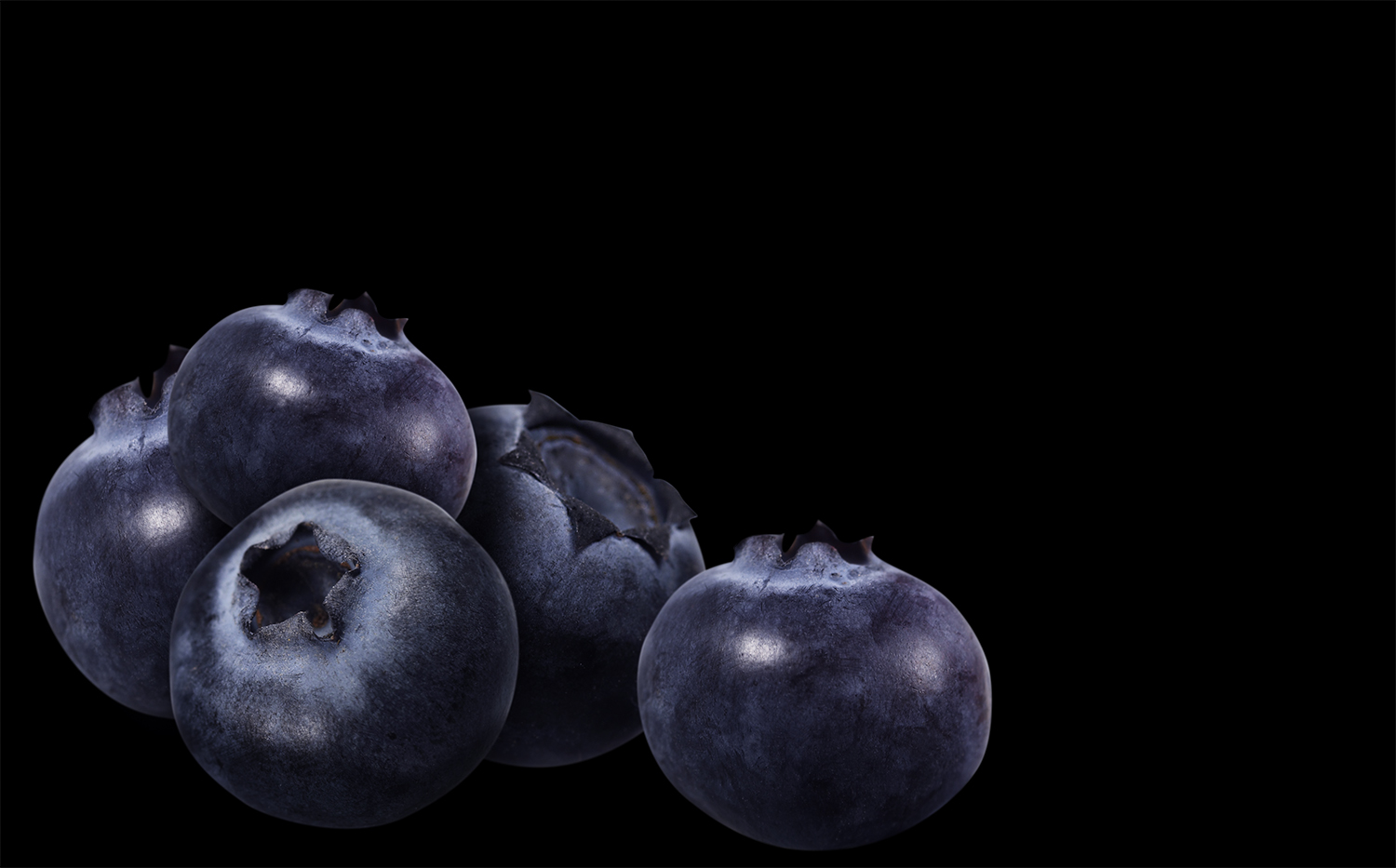 5_Blueberries.jpg