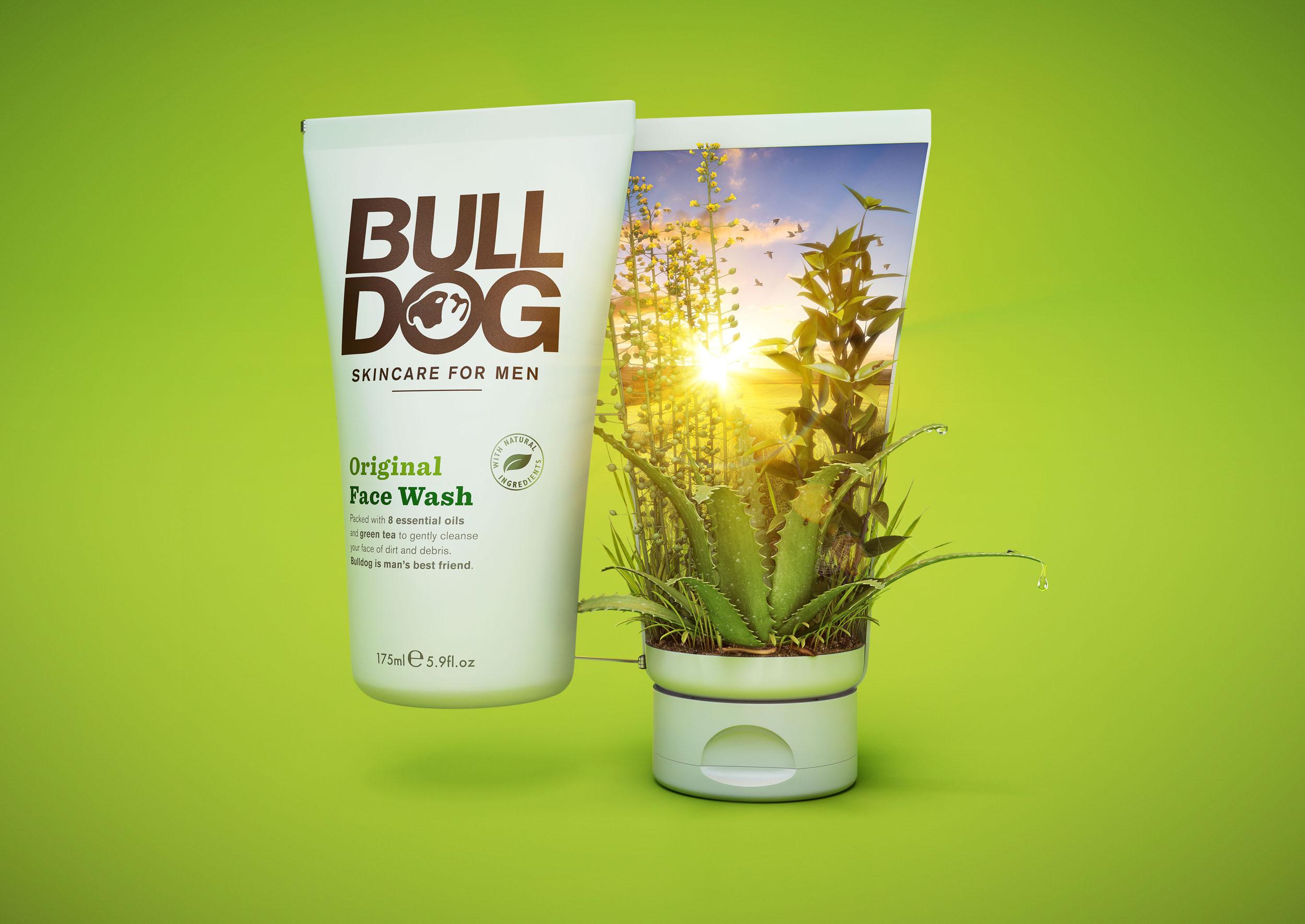 bulldog-concept