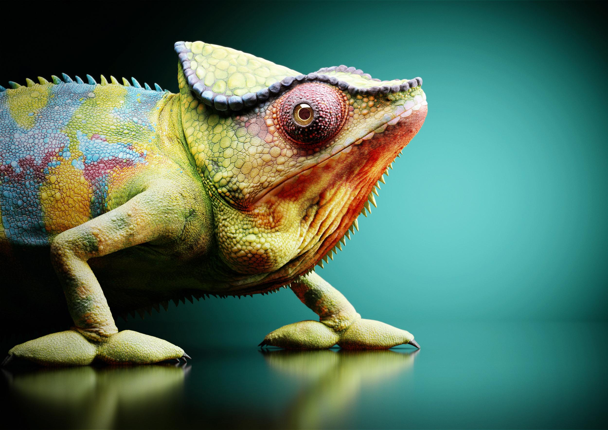 chameleon-landscape