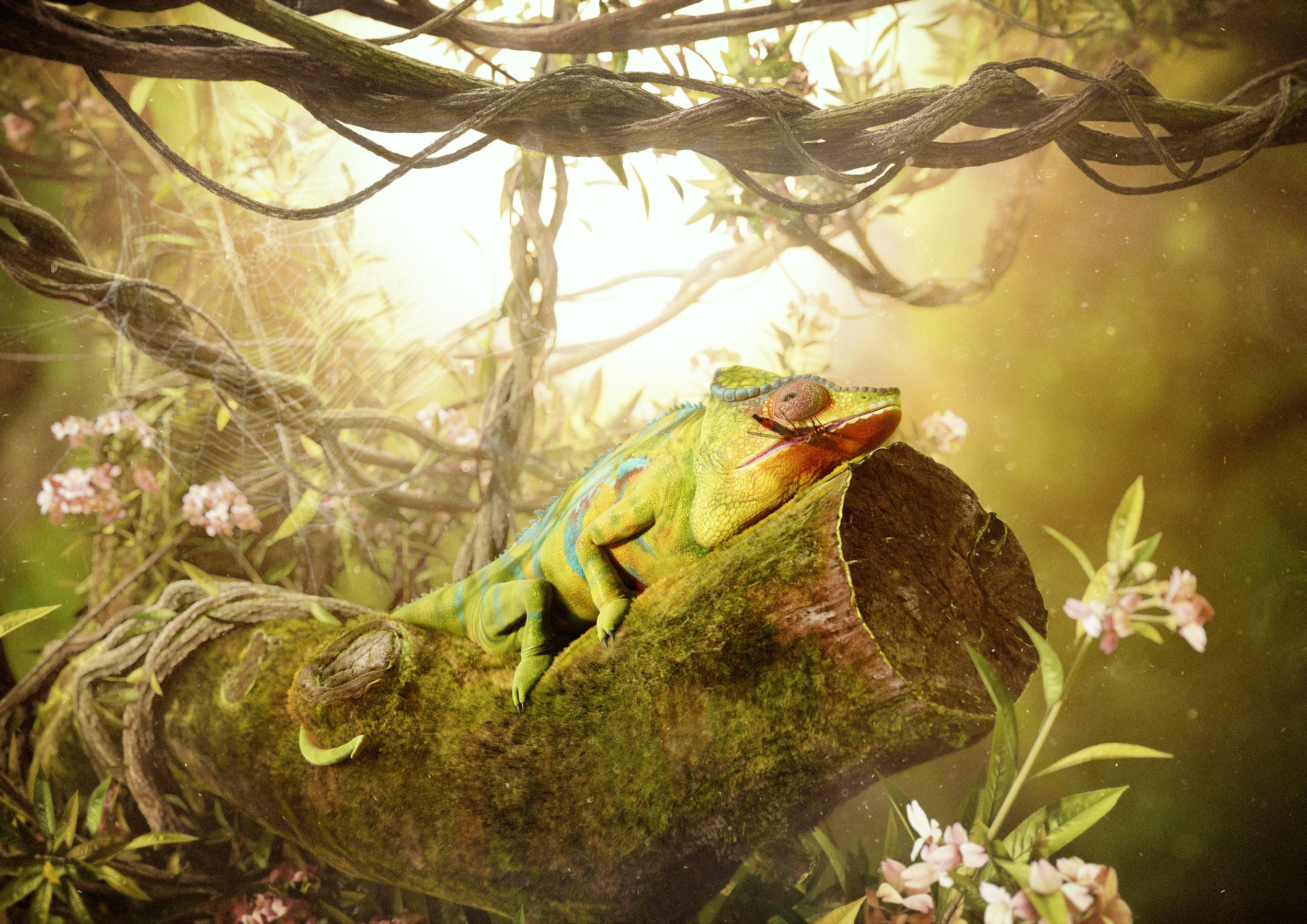 chameleon-jungle