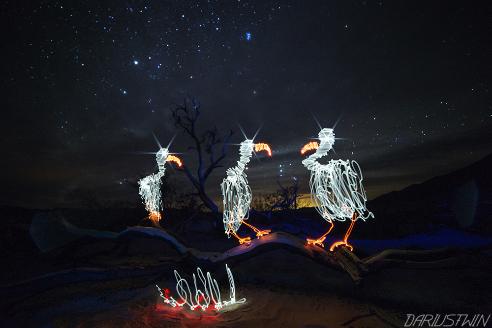 Buzzards_vultures_lightpainting_art_darren_pearson_dariustwin_deathvalley_travel_night-writer.jpg