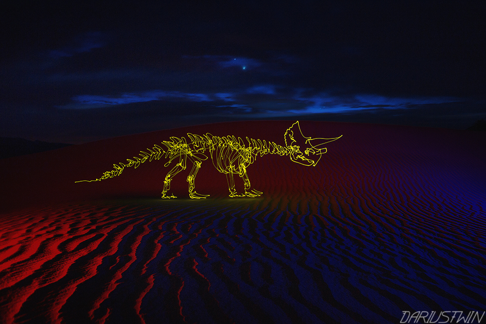 Triceratops on the Dunes
