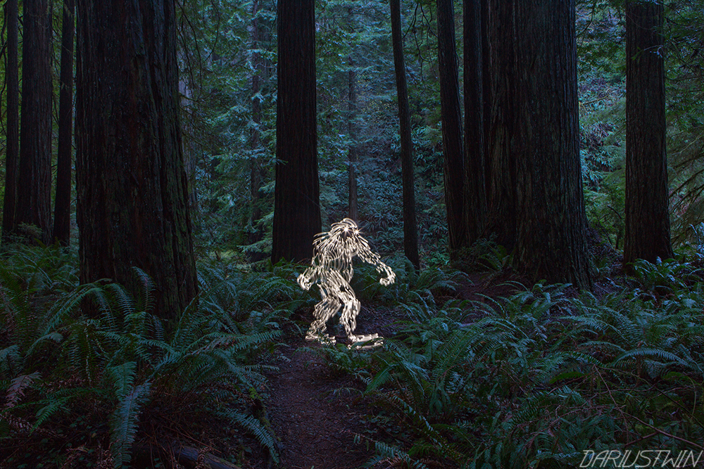 Bigfoot_forest_art_lightpainting_redwoods_longexposure_slowshutter_photography_dariustwin_darren_pearson.jpg