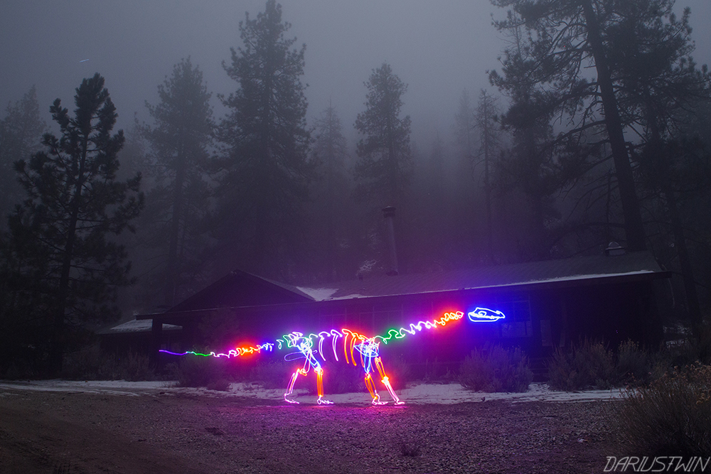 dinosaur_dariustwin_darren_pearson_art_photography_fog_lightfossil_nature_lowlight_slowshutter_lightpainting.jpg