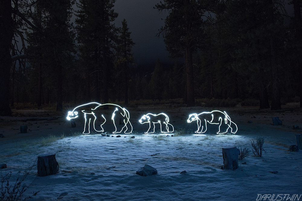 polarbears_cute_love_family_snow_winter_dariustwin_lightpainting_art_nature_environment_conservationist_environmentalist_wwf_darren_pearson_nightwriter_photography.jpg
