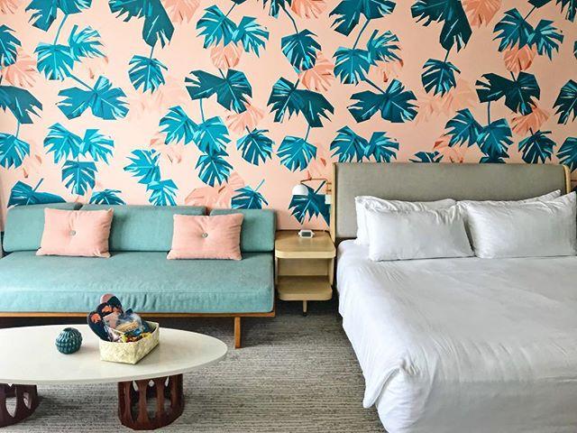 more tropical perfection from the @laylowwaikiki! 🌴 • • • • • #fromcitytosuburbia #dallasblogger #dallasmomblogger #dallasdesignblogger #hawaiistagram #hawaiiwithkids #oahu #laylow #laylowwaikiki #cntraveler #tlpicks #shotoniphone #traveldames #midcenturymodern #tropicaldesign