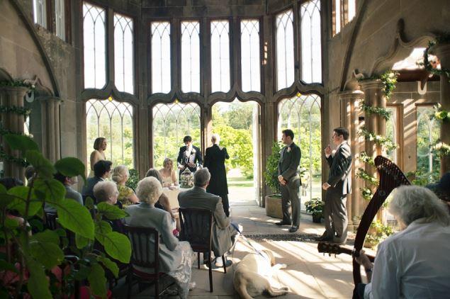 inside camellia house.JPG