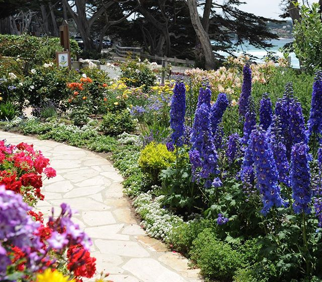 Carmel Seaside Garden