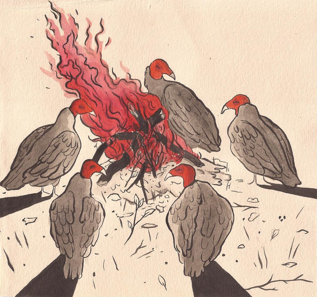 vultures copy.jpg
