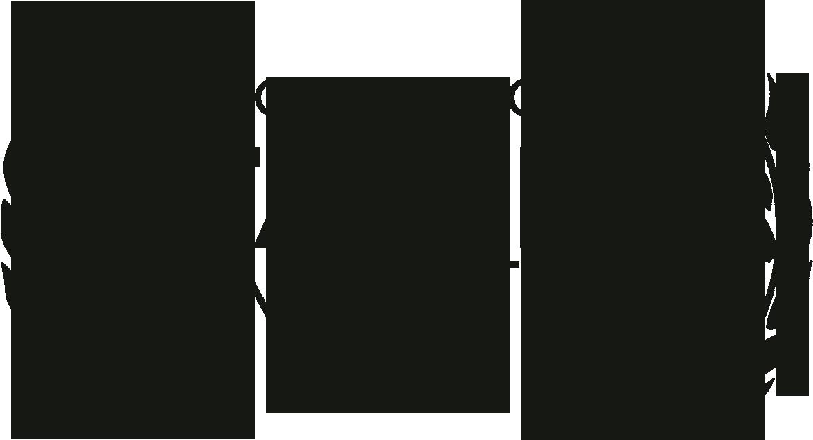 StarLite Laurel 2015.png