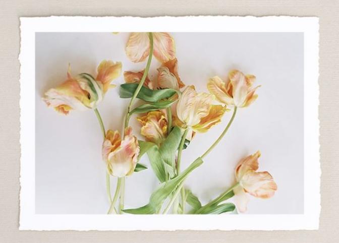 rough cut floral.jpg