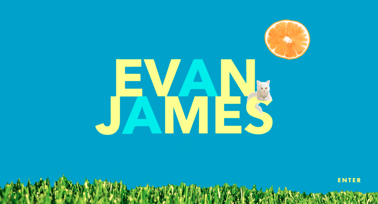 Illustration and site for Evan James:  evanjameswriter.com