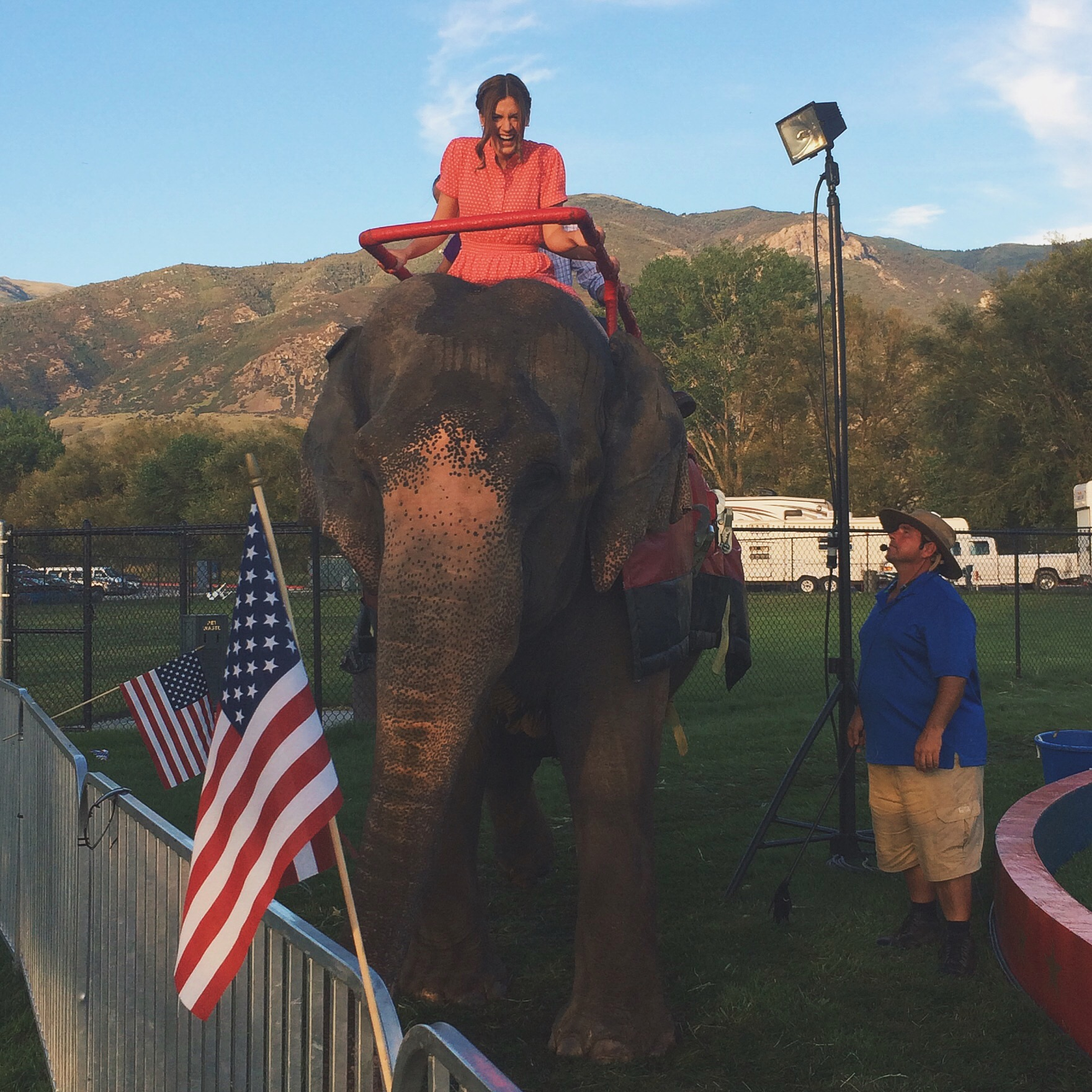Elephant || Utah State Fair || A Dash of Salter