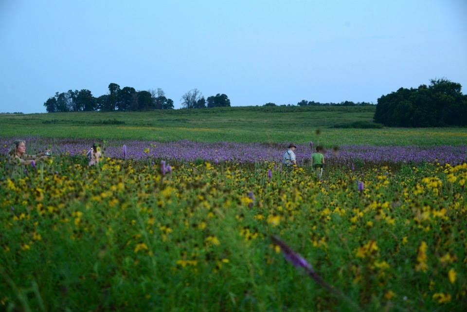 prairie-becky.jpg
