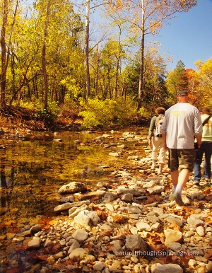 Hiking along Bee Creek