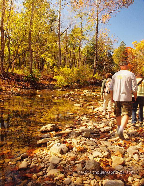 fall hiking along bee creek annb web.jpg
