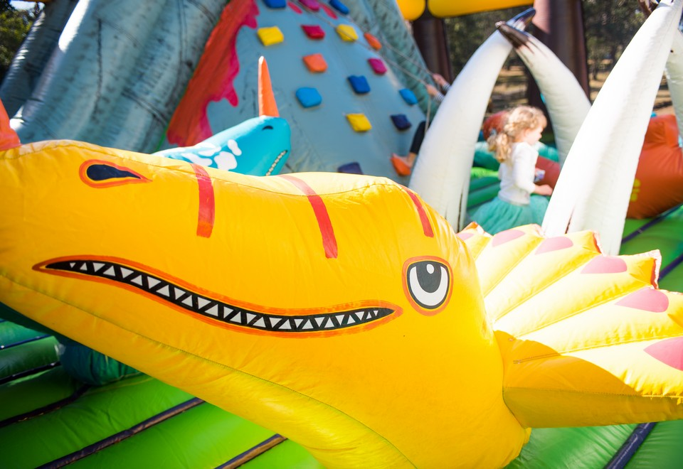 Jurassic-Adventure-Inflatable-Ride-for-Hire-Hawkesbury.jpg