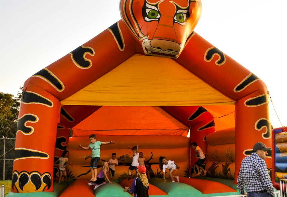 Tiger-Jumping-Castle-for-Hire (1).jpg