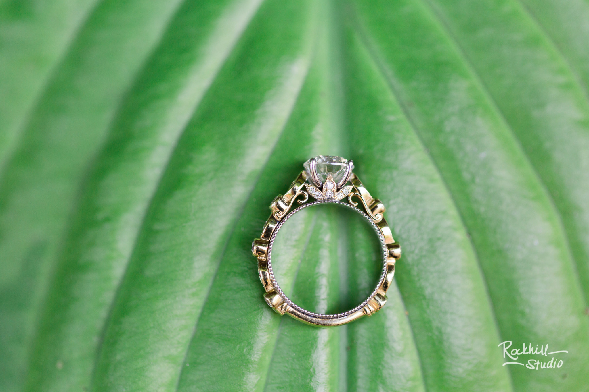 Traverse City Wedding Photographer Coffee Shop Engagement Grand Rapids ring macro shot
