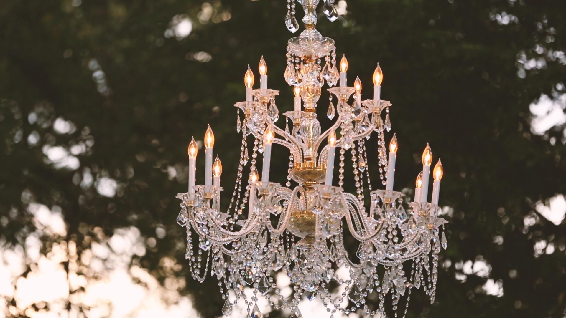 Wedding Decor - Bride Film