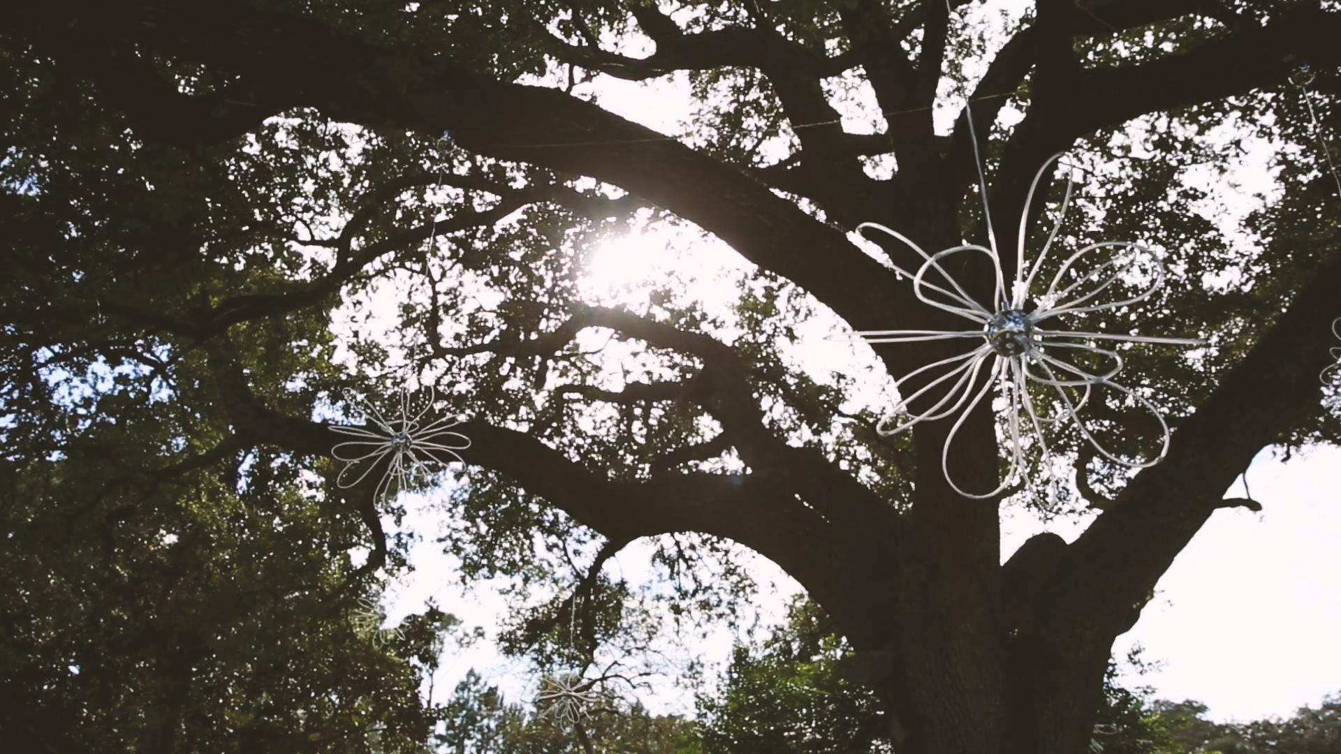 Longue Vue Garden Wedding Videographers New Orleans Tree Decor - Bride Film