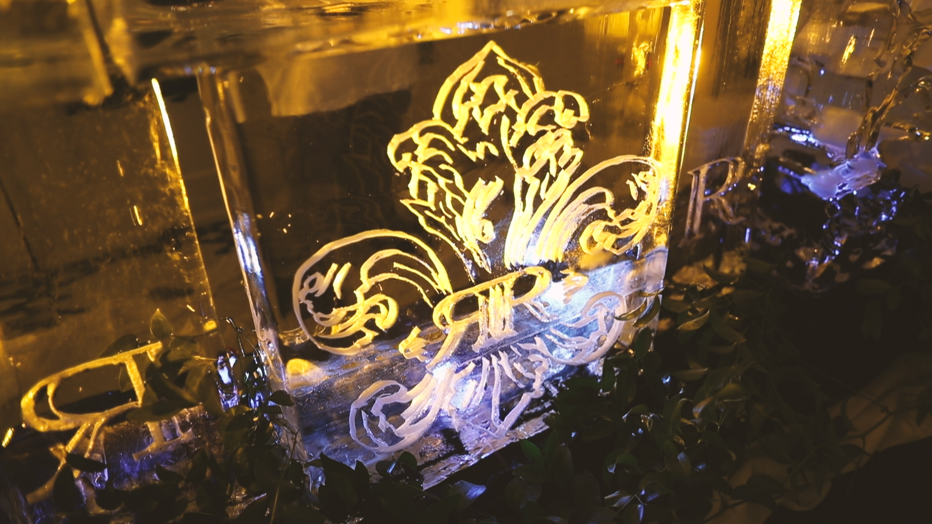 Ice Sculpture - Bride Film