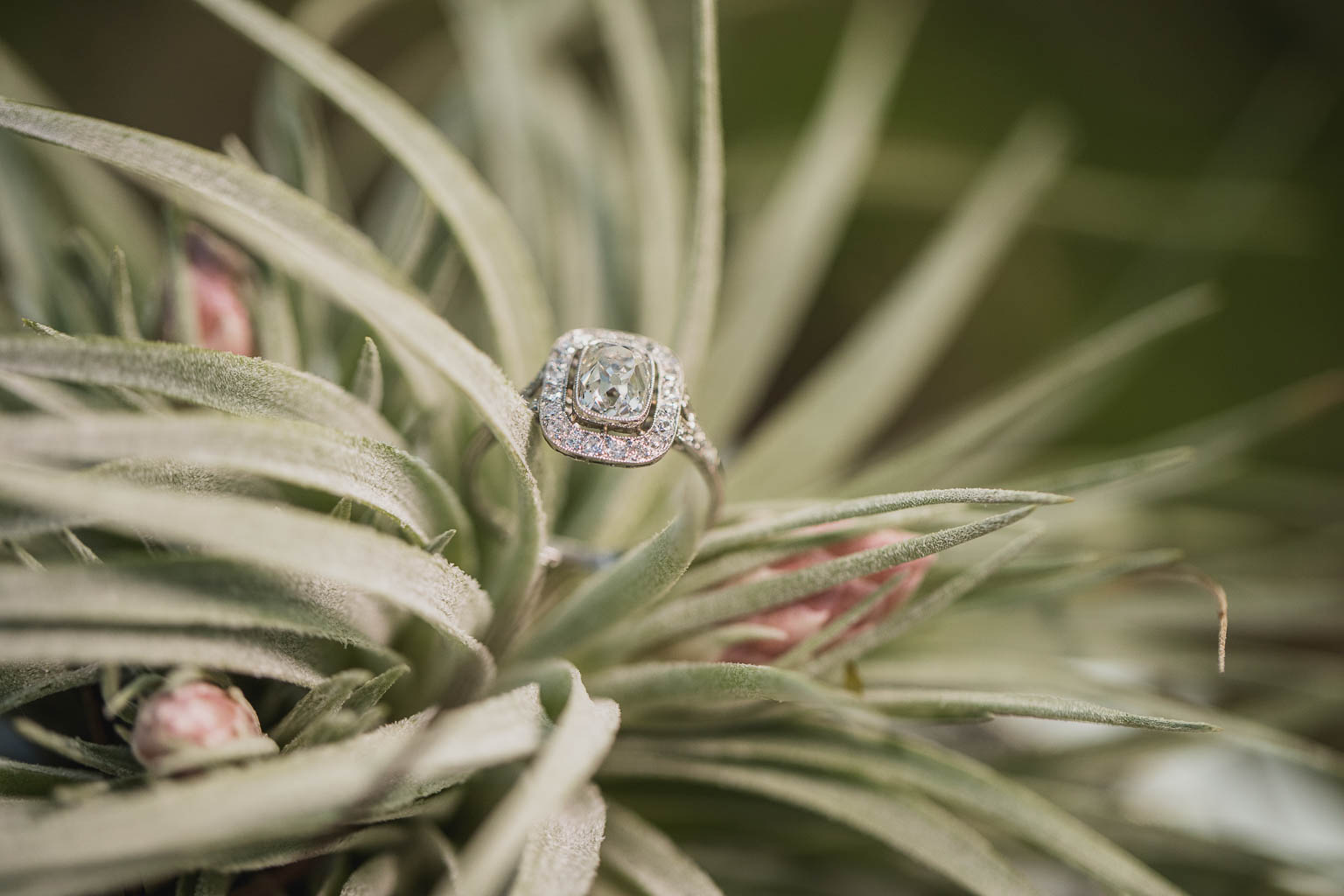 Wedding Engagement Ring New Orleans - Bride Film