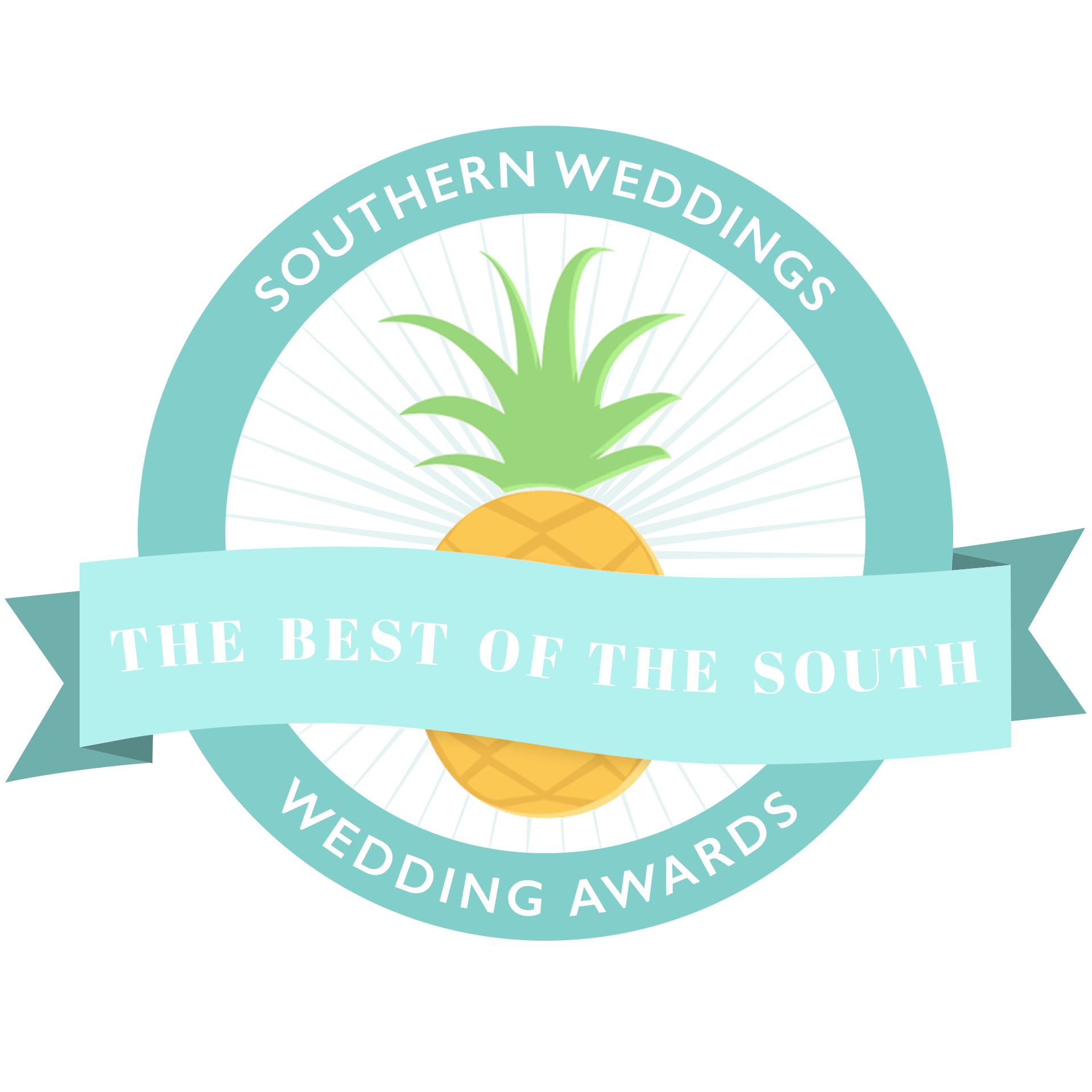 Southern Weddings Best Videographer in the South